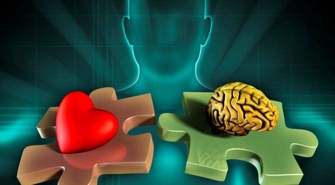 A chave emocional das boas decisões